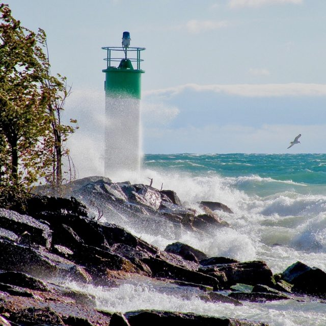 Blustery Day - Wellington Lighthouse by Sheila Ascroft