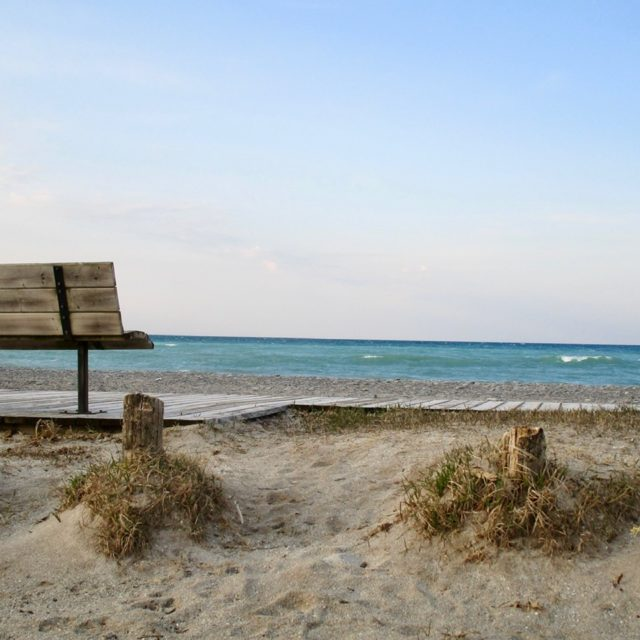 Summer Beach Bench by Sheila Ascroft