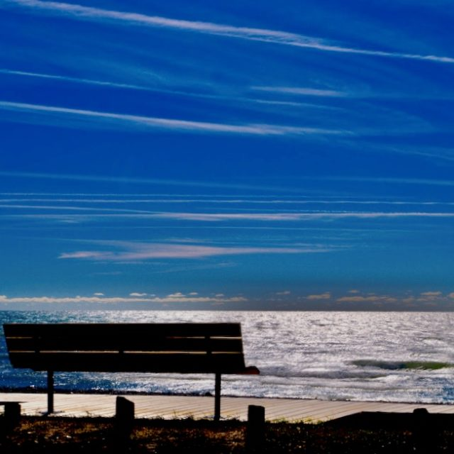 Wellington Beach in November by Sheila Ascroft