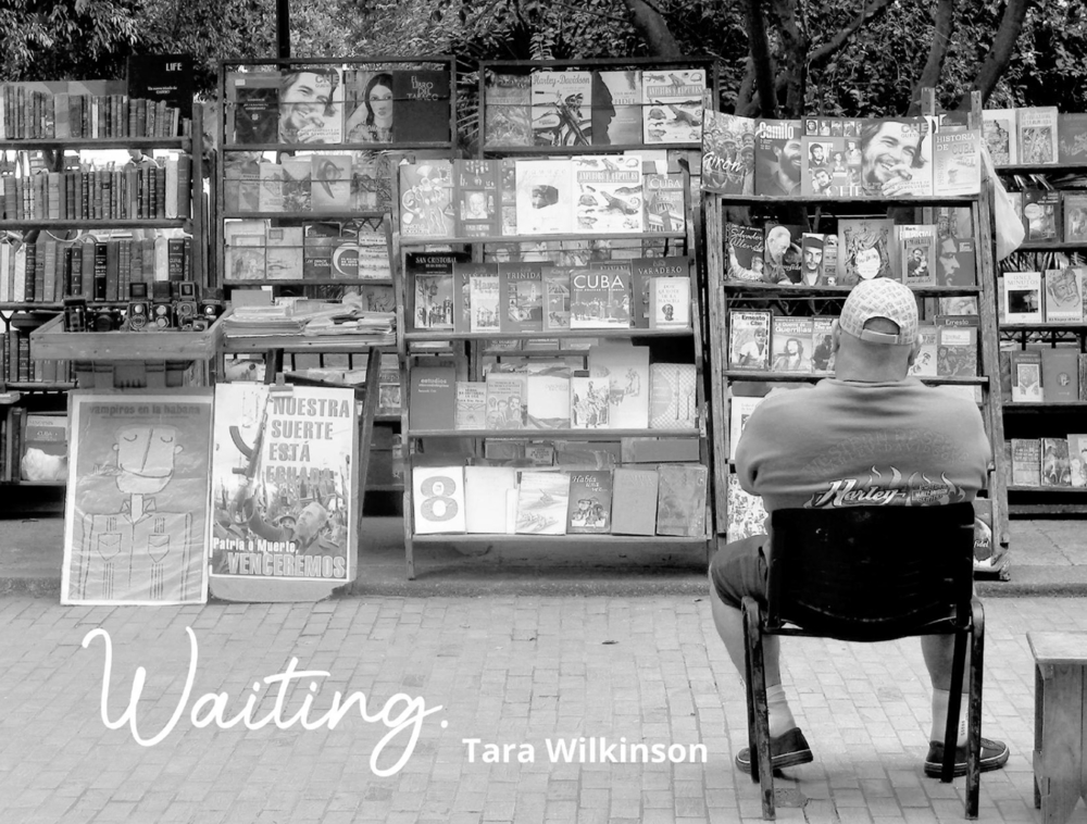 WAITING Photography Book, 2021 © Tara Wilkinson, ANDARA Gallery