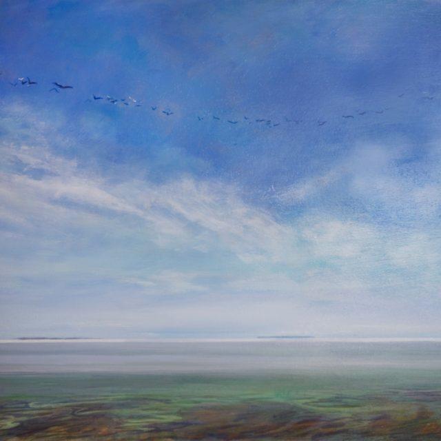 Flight over Ostrander Point