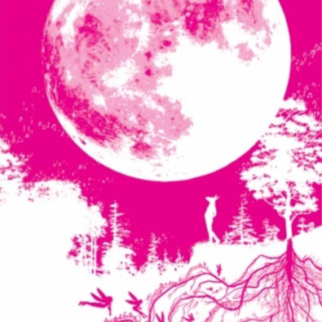 A Midsummer Night's Dream Musical