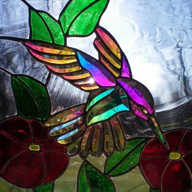 dichroic hummingbird and flowers