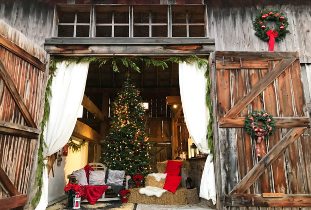 Holiday Photo in the Barn