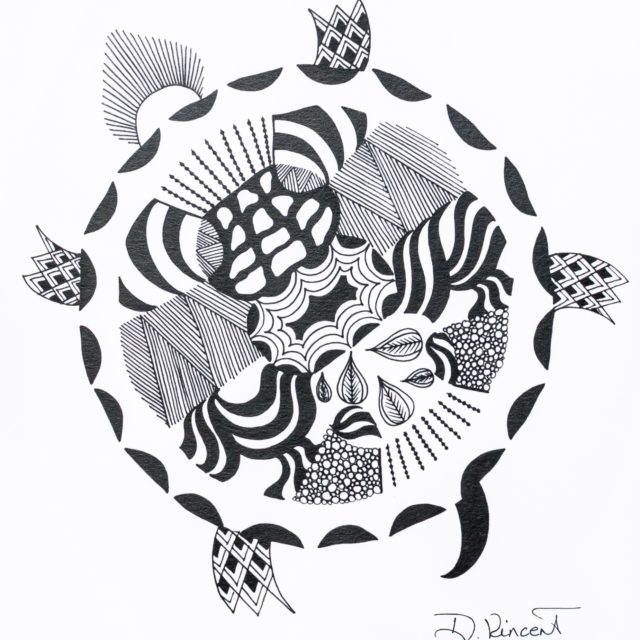 Turtle, Pen & Ink
