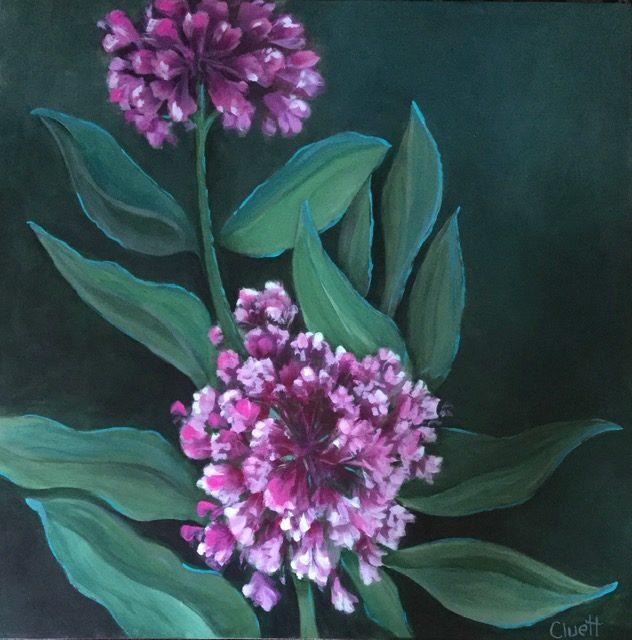 In My Garden #3 - Milkweed in Bloom by Veronica Cluett, acrylic