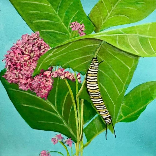 Monarch Caterpillar by Agnes Bellegris, acrylic on canvas
