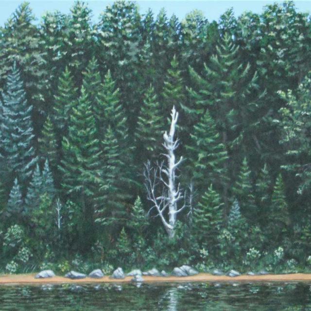Dead Birch by Ian Beveridge, acrylic on canvas